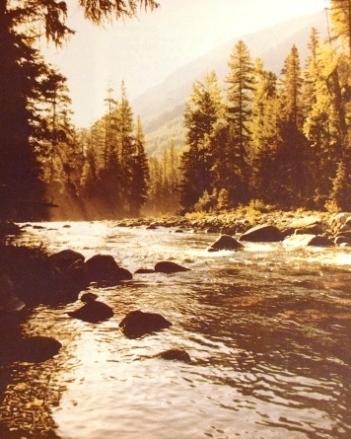 Yellowstone-Rapids